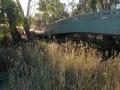 darebin-creek-201403-035
