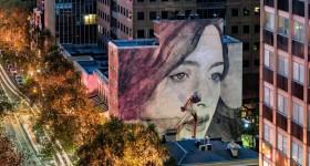 Rhone Street Art | 330 Collins St
