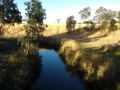darebin-creek-001