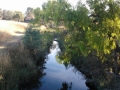 darebin-creek-201403-033