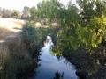 darebin-creek-201403-033
