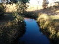 darebin-creek-201403-034