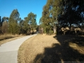 darebin-creek-201403-009
