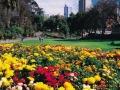 Treasury-Gardens-31432