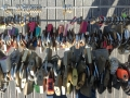 lovelockbridge020