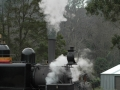 puffing-billy-steam-train-2007-006