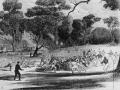 australianfootball1866~0